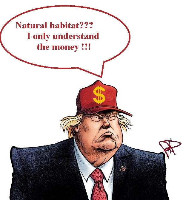 Trump capisce solo il denaro